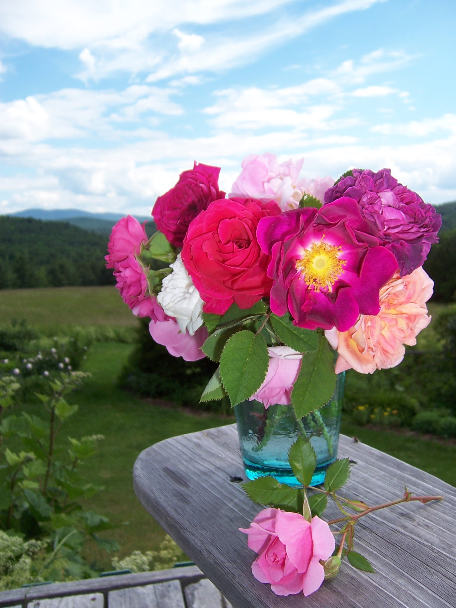 Why Our Flower Essence Combinations Have So Many Flower Essences In