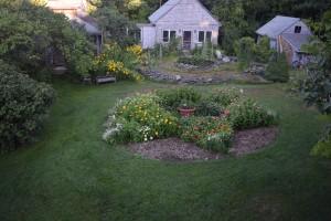 Equanimity Venus Garden